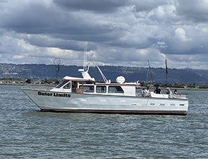 Sann francisco Bridge